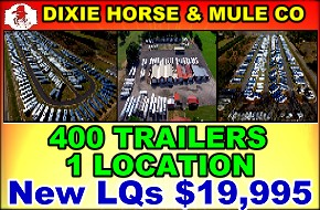 Dixie Horse and Mule