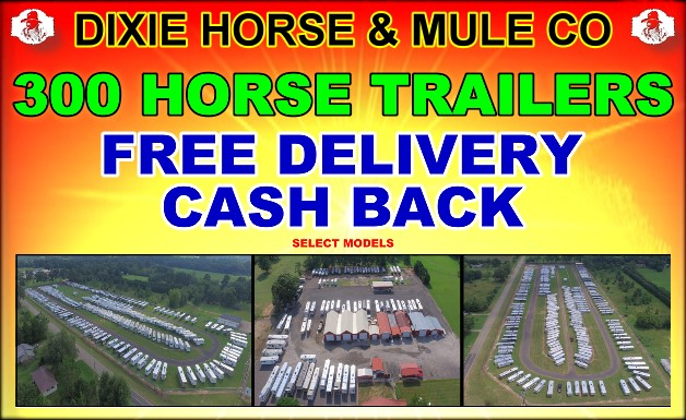 Dixie Horse and Mule Company - Living Quarter Horse Trailers